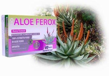 aloe-ferox-compresse